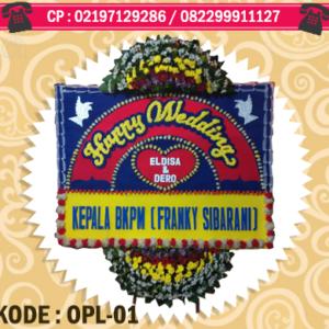 OPL-01