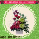 BM FP013