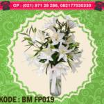 BM FP019