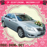 DKM-001