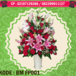 BM FP001