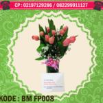 BM FP008