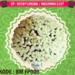BM FP009