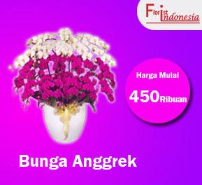 banner bunga anggrek