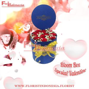 Bloom Box Biru Valentine Mawar Merah